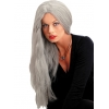 Wig 24 Inch Straight Grey